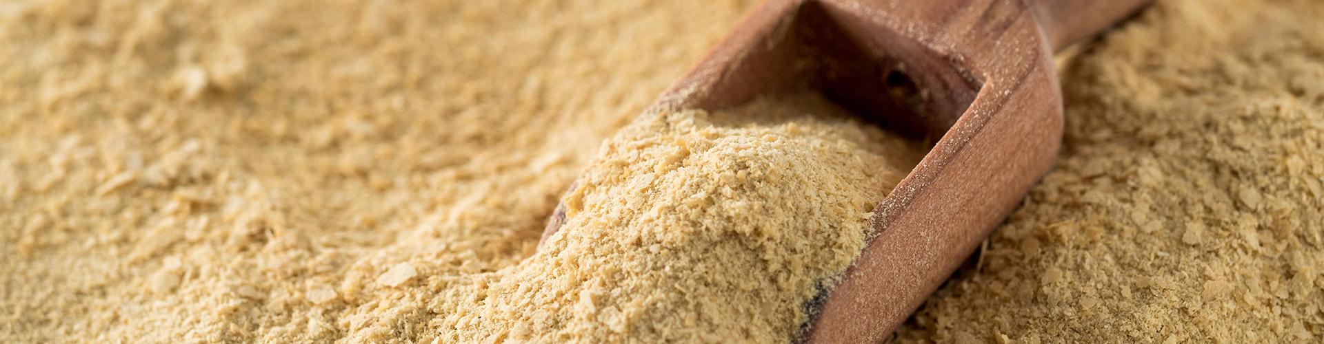 Minerales orgánicos nutritec